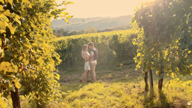 affectionate couple in the vineyard - prekmurje stock videos & royalty-free footage