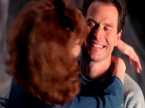 vídeos de stock e filmes b-roll de affectionate couple - beliscar