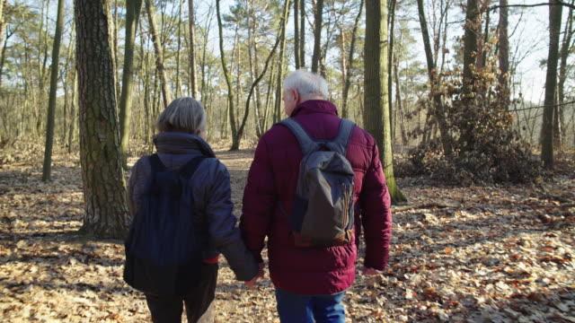 vídeos y material grabado en eventos de stock de pareja de ancianos afectuosos de senderismo en el bosque - zona arbolada
