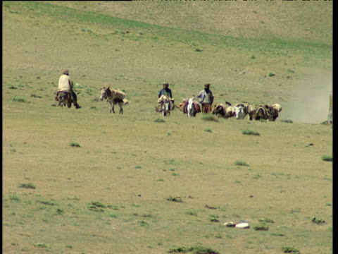 stockvideo's en b-roll-footage met afghan men travel across barren mountainous landscape with animals as ex-military truck passes at speed stirring dust afghanistan - afghanistan