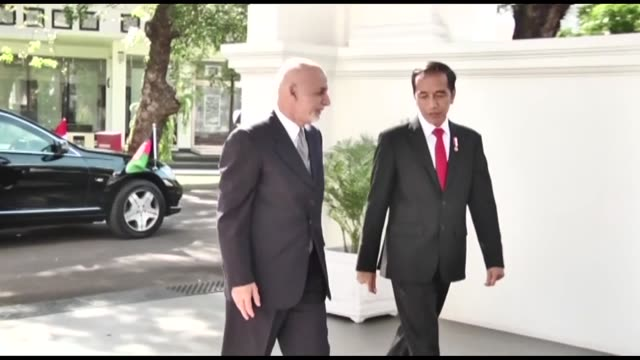 afghan president ashraf ghani is greeted by his indonesian counterpart joko widodo as he arrives during their meeting at merdeka palace in jakarta... - president stock videos & royalty-free footage