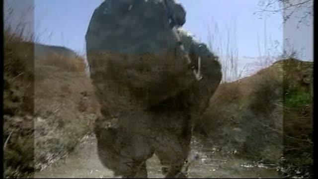 afghan soldier kills three british soldiers tx 1532010 babaji from camera on camera opertor's helmet showing british troops wading along stream as... - army helmet stock videos & royalty-free footage