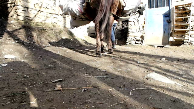 afghanistan road with horse and people - afghanistan stock videos and b-roll footage