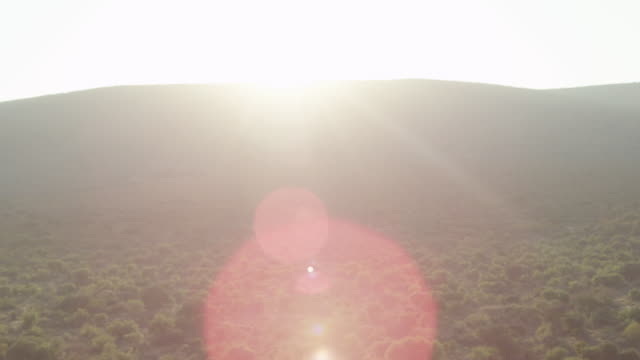 Africa Field Drone Morning