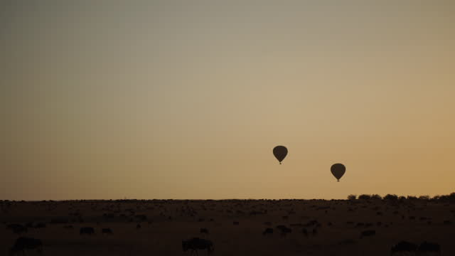 africa - hot air balloon above grassland - two objects stock videos & royalty-free footage