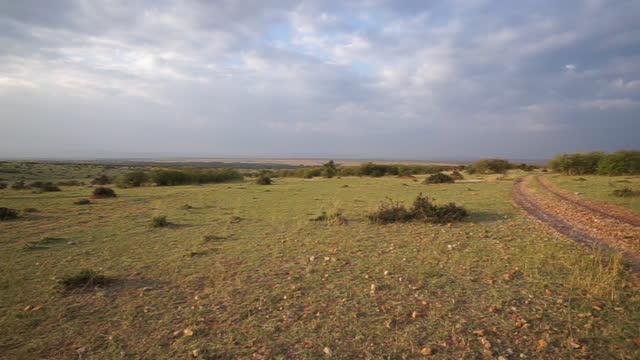 africa - sun and wide grassland - prairie stock videos & royalty-free footage