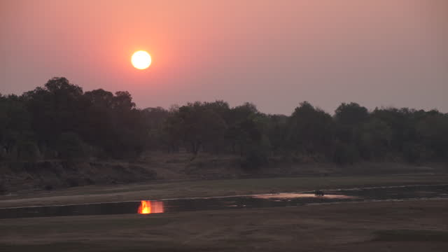 africa - sunset at riverside - wide stock videos & royalty-free footage