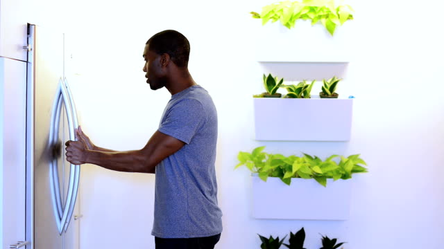african american male opening the refrigerator - pot plant stock videos and b-roll footage