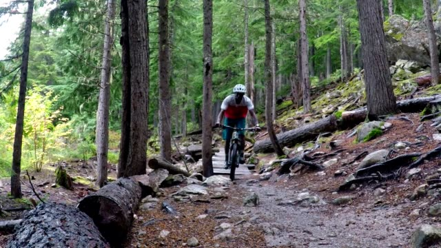 african american man on a mountain bike in the forest - only men stock videos & royalty-free footage
