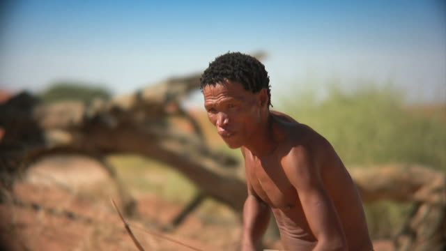 african bushman hunting - bow and arrow stock videos and b-roll footage