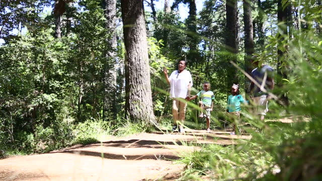 african family taking a relaxed walk in the nature - tiptoe stock videos & royalty-free footage