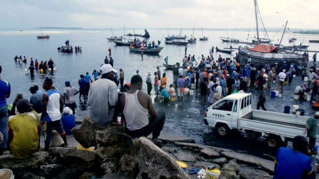 african fish market at the beach with fishermen and boats, zanzibar - tanzania stock videos & royalty-free footage