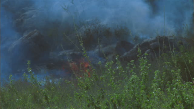 cu african grass fire flames amongst rocks zo to show rocky outcrop - outcrop stock videos & royalty-free footage