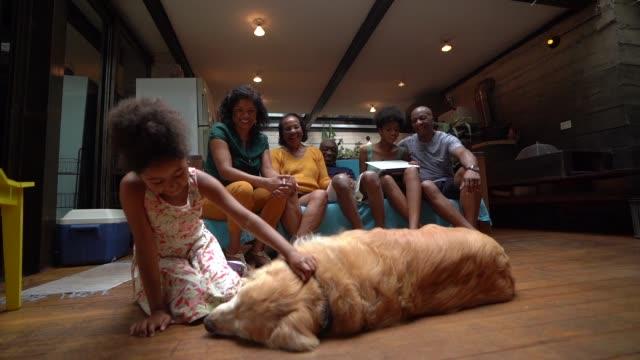 vídeos de stock, filmes e b-roll de família de latino-americano africana junto em casa curtindo o cão - latino americano