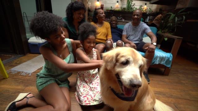 vídeos de stock, filmes e b-roll de família de latino-americano africana junto em casa curtindo o cão - unidade