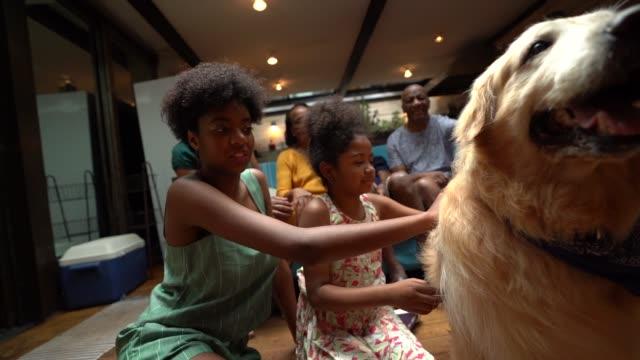 vídeos de stock, filmes e b-roll de família de latino-americano africana junto em casa curtindo o cão - segurar