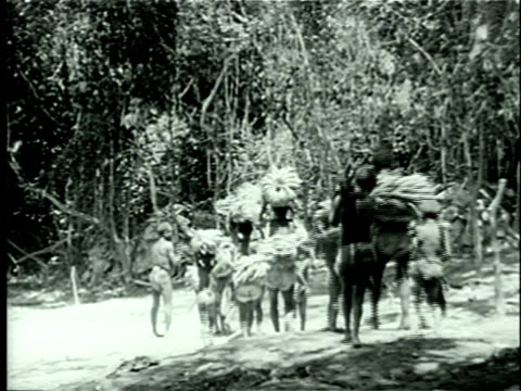 vídeos de stock, filmes e b-roll de 1939 ws african pygmies arriving at their village laden with bananas, plantains and iron tools for distribution among villagers following bartering ceremony/ africa/ audio - banana de são tomé