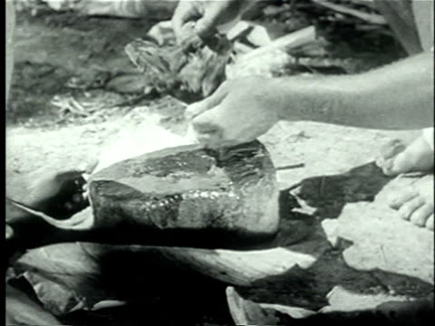 vidéos et rushes de 1939 cu african pygmy men rubbing type of wood on surface of stone to release natural dye/ africa/ audio - caillou