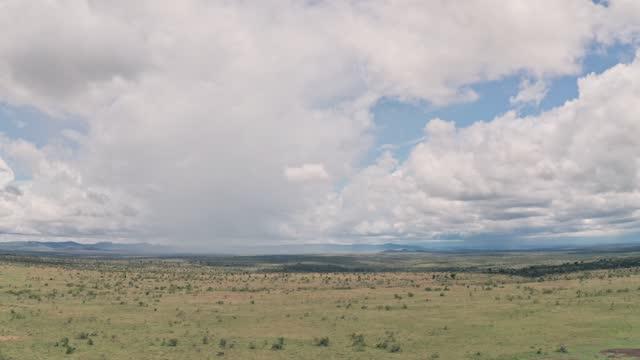 vídeos de stock e filmes b-roll de african savanna and plains landscape in laikipia, kenya. aerial drone right to left - pradaria
