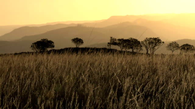 African savannah and mountains sunset