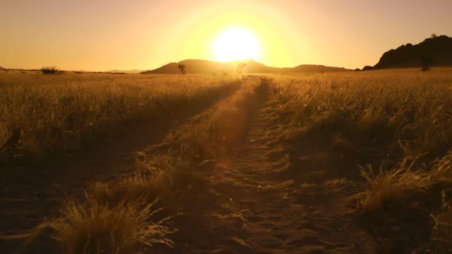 アフリカの日没 - 未舗装点の映像素材/bロール