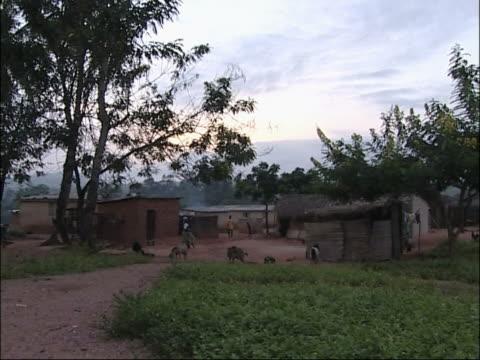 african village. - by bildbanksvideor och videomaterial från bakom kulisserna