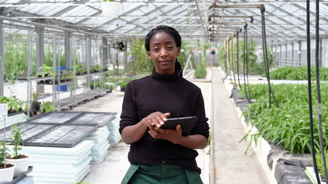 african woman with digital tablet working in greenhouse - inspector stock videos & royalty-free footage