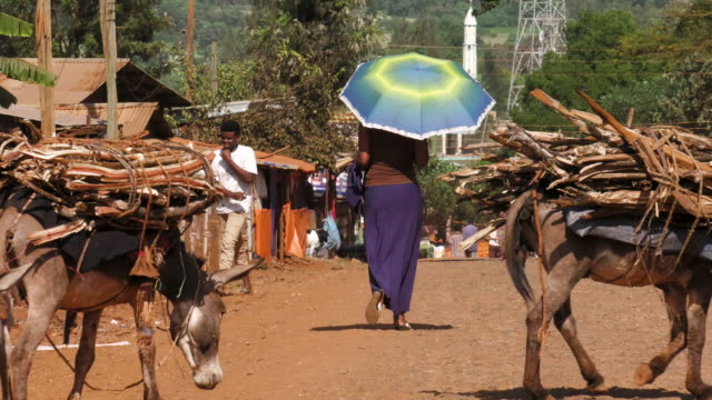 african woman with umbrella - ethiopia stock videos & royalty-free footage