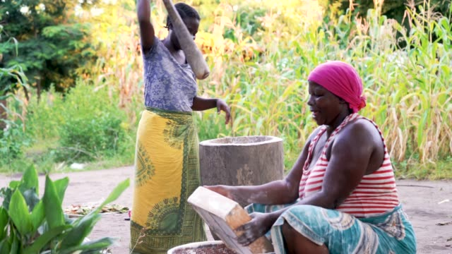 african women at work, mashing and sieving cassava flour in wooden pod - village stock videos & royalty-free footage
