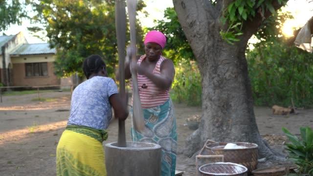 vídeos y material grabado en eventos de stock de mujeres africanas en el trabajo, machacando harina de yuca en vaina de madera - escena rural