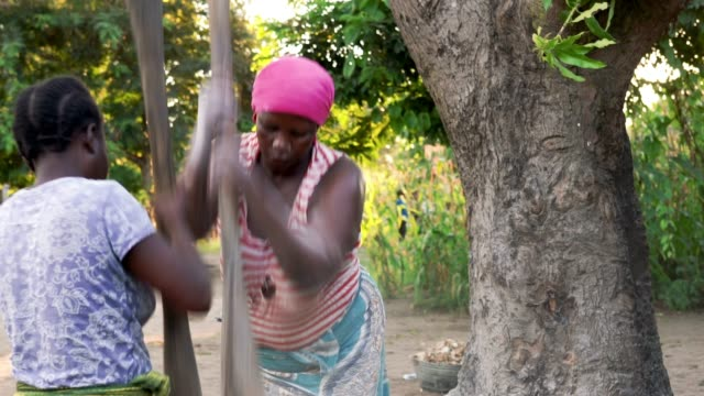 African women at work, mashing cassava flour in wooden pod