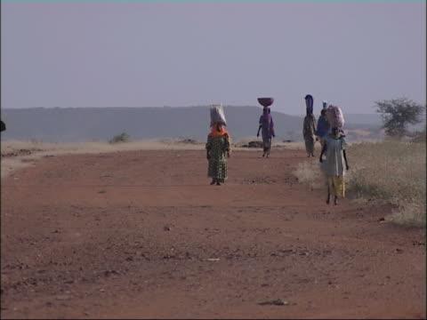 アフリカの女性の製品には、ヘッド。ニジェール、西アフリカます。 - ニジェール点の映像素材/bロール