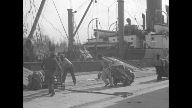 africanamerican dock workers using hand trucks to load cotton bales onto ship rope around bales by ramp to deck / man operating steam winch / various... - scales stock videos & royalty-free footage