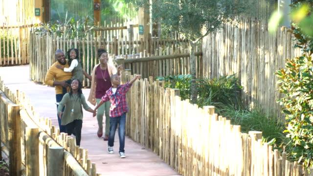 動物園で5人のアフリカ系アメリカ人の家族 - 動物園点の映像素材/bロール