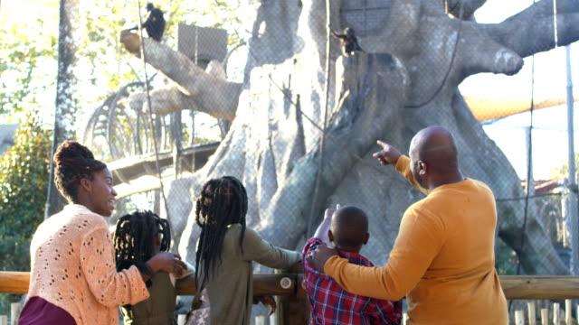 afroamerikanische fünfköpfige familie im zoo - zoo stock-videos und b-roll-filmmaterial