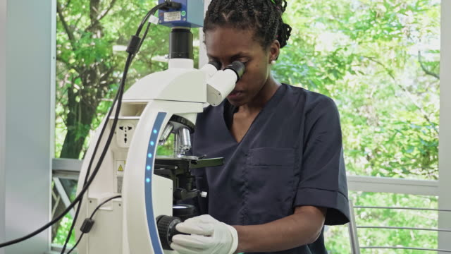 african-american female pathologist using microscope in medical laboratory - pathologist stock videos & royalty-free footage