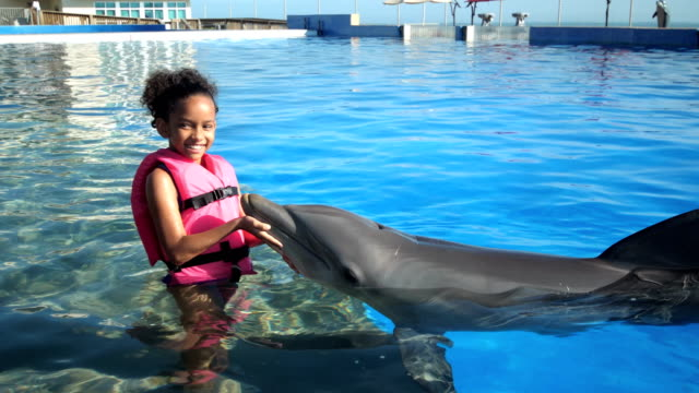 african-american girl with animal trainer, dolphin - animal nose stock videos & royalty-free footage