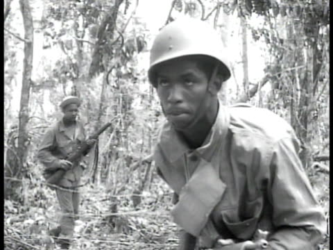 AfricanAmerican infantry soldiers making way through vegetation wooded area soldier on stomach firing rifle AfricanAmerican soldiers firing artillery