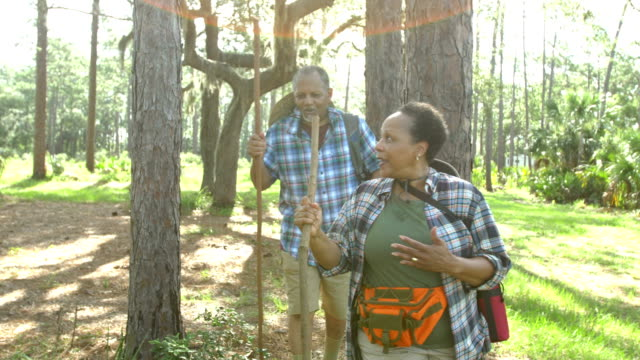 african-american senior couple hiking in woods - hiking pole stock videos and b-roll footage
