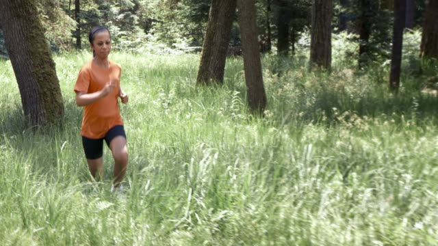 slo mo ds african-american woman running in the forest - endurance stock videos & royalty-free footage