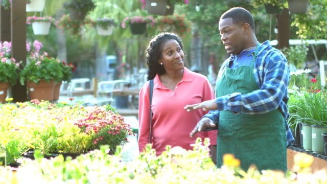 african-american worker in plant nursery helps customer - fioraio negozio video stock e b–roll