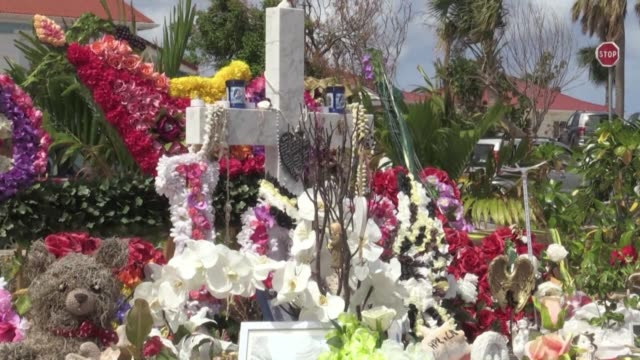 vídeos de stock e filmes b-roll de after a highly publicised spat over his inheritance the family of deceased french rocker johnny hallyday are now squabbling over his grave - concurso televisivo