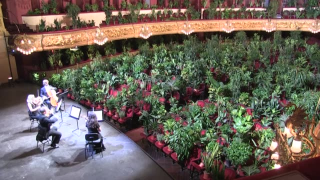 ESP: Barcelona opera house reopens with concert exclusively for plants