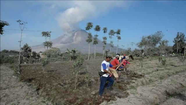 vídeos y material grabado en eventos de stock de after an eruption that killed 15 at the weekend mount sinabung continues to spew smoke into the sky as indonesian farmers return to work clean back... - monte sinabung