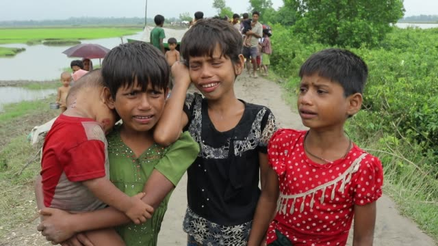 after crossing the bangladesh myanmar naf river border myanmar rohingya children crying because they lost their family member and describe the brutal... - cox basar stock-videos und b-roll-filmmaterial