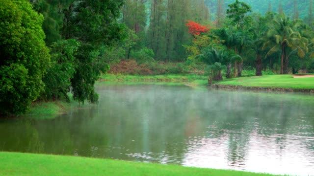 雨が降り、水に蒸気を加えて、公園内の水蒸気と雨滴を降らせた後 - 自然美点の映像素材/bロール