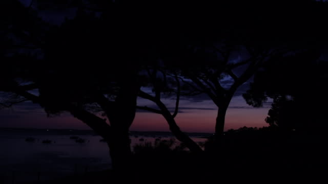 after sunset at the seaside - arcachon stock videos & royalty-free footage