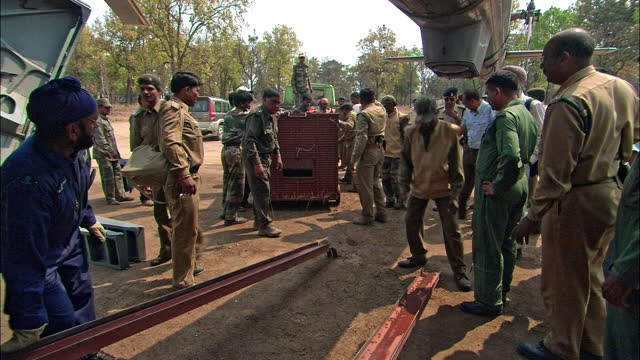 after translocation tiger project - forest officers reporting to media/ loading tiger crate into helicopter - interview event stock videos & royalty-free footage