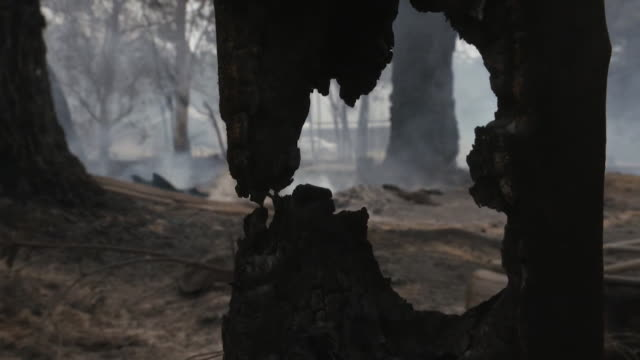 """aftermath left by bush fires in the village of balmoral in new south wales - """"bbc news"""" stock videos & royalty-free footage"""