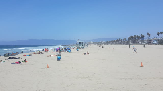 afternoon looking out over hermosa beach people on the sandy beach houses line the boardwalk and palm trees surf crashing on the beach in the... - cabina del guardaspiaggia video stock e b–roll